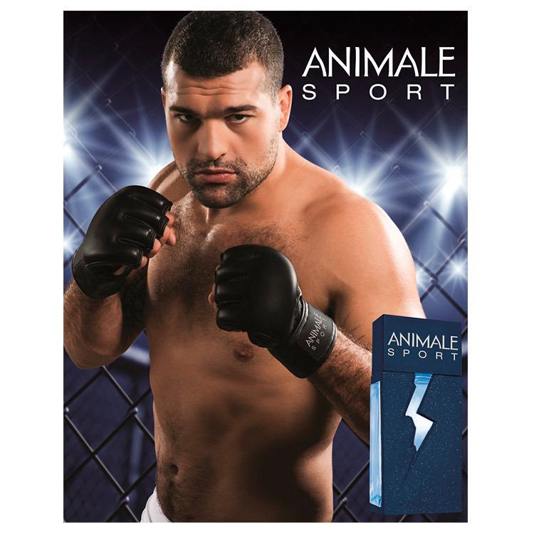 animale sport banner